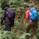 Hiking | Backpacking